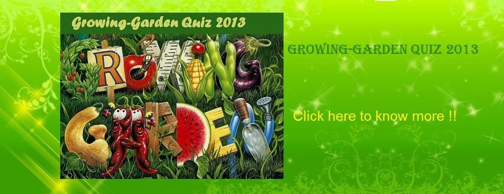 Growing-Garden Quiz 2013
