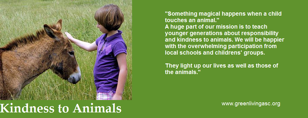 Kindness to Animals